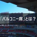 【バルコニー席とは】乃木坂46 京セラドームの座席を解説します