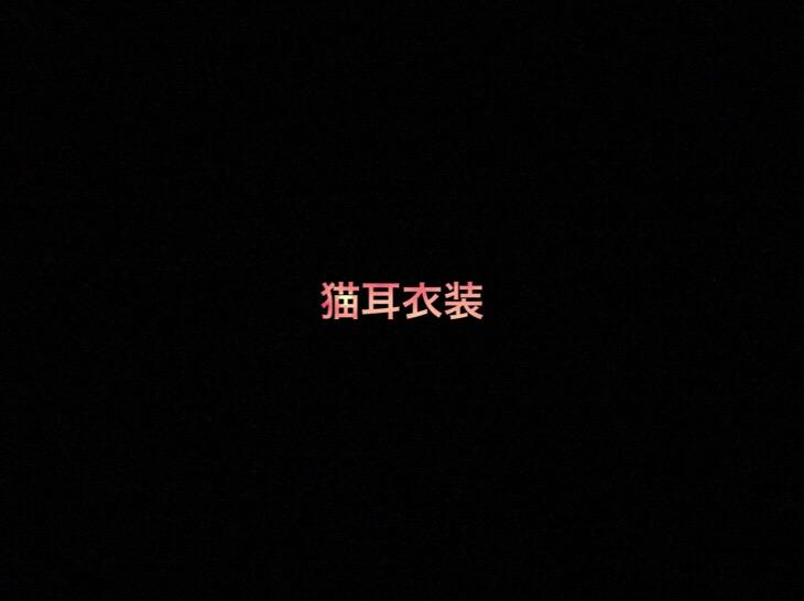日向坂46 生写真「猫耳衣装」レート表